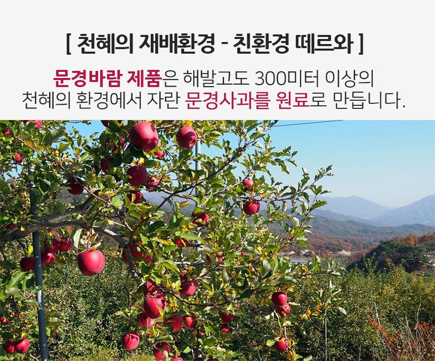 사과증류주 문경바람