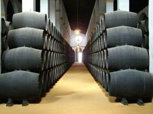 sherry wine 숙성고